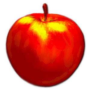 apple fruitarian lena nechet